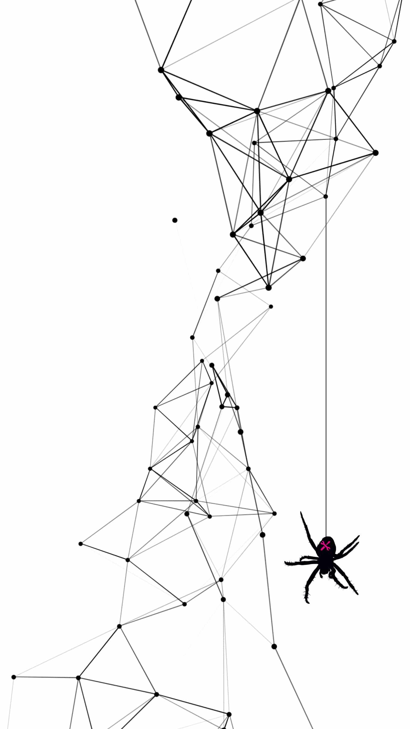 Mega spider web illustration