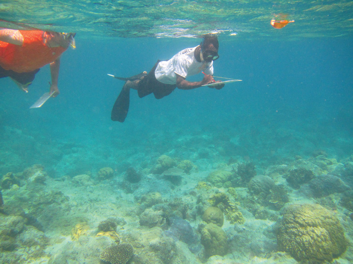 image of two people examining the underwater