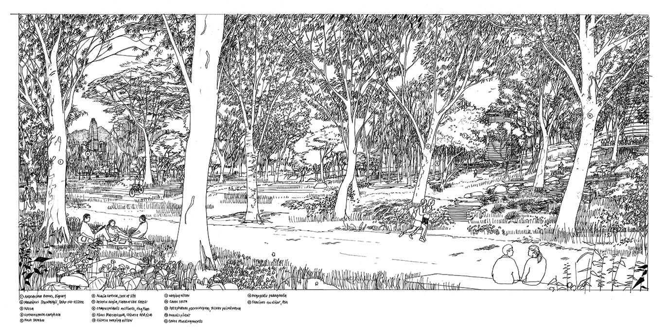 hand drawn illustration of a city park