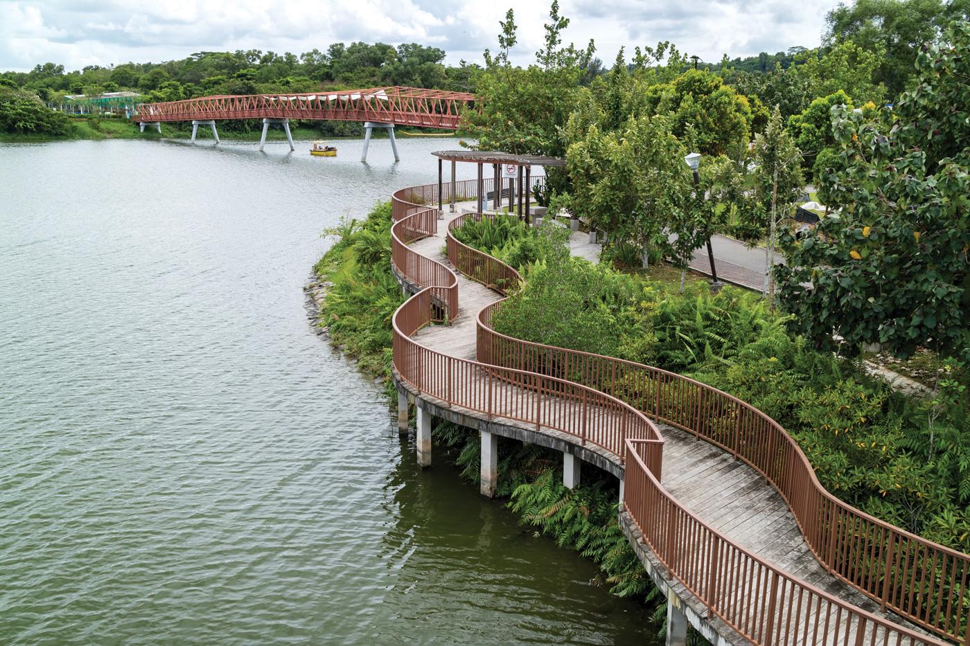 Singapore's Biophilic Town Framework